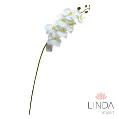 Haste Orquidea  Branca AR96