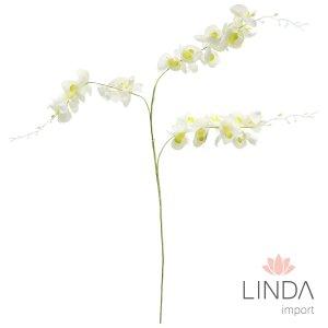 Haste de Orquidea Branca CF04