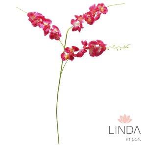 Haste de Orquidea Vermelha CF05