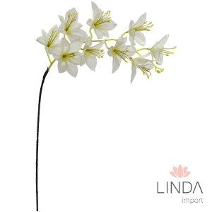 Haste Orquidea Branca C/9 Flores CF34