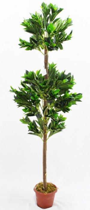 Árvore Bay Leaf de165cm c/2 Tupiara BJ12
