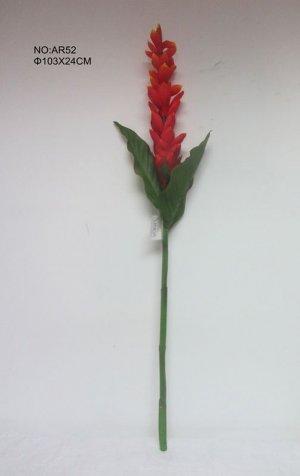 Haste Flor de Gengibre Vermelha Ar52