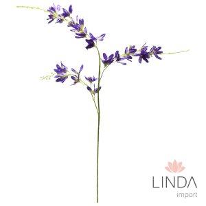 Haste de Orquidea Roxa CF14